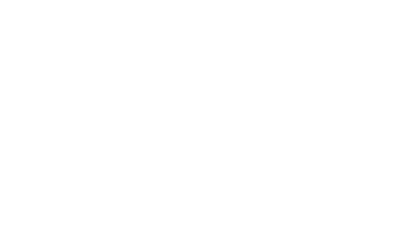 Dr. Irena Eris Logo Wit